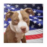 Perrito de Pitbull del americano Azulejos Cerámicos
