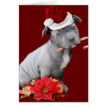 Perrito de Pitbull del navidad Tarjeta De Felicitación