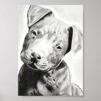 Perrito de Pitbull en la impresión del lápiz de Ja Impresiones