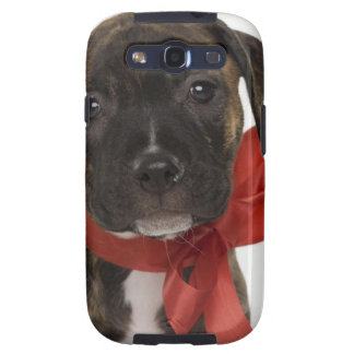 Perrito de Pitbull que lleva la cinta roja Galaxy S3 Fundas