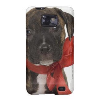 Perrito de Pitbull que lleva la cinta roja Galaxy SII Carcasa