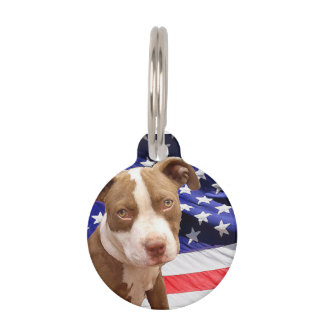 Perrito de Pitbull Terrier del americano Placas Para Mascotas