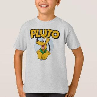 Perrito de Plutón el   con nombre Playera