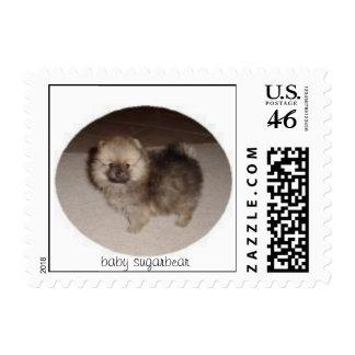 Perrito de Pomeranian de los sellos