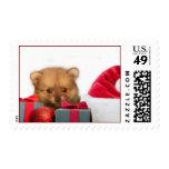 Perrito de Pomeranian del navidad Sellos