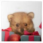 Perrito de Pomeranian del navidad Tejas Ceramicas