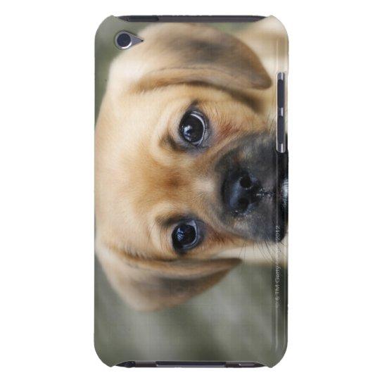 Perrito de Pugalier que mira la cámara Funda Para iPod De Barely There