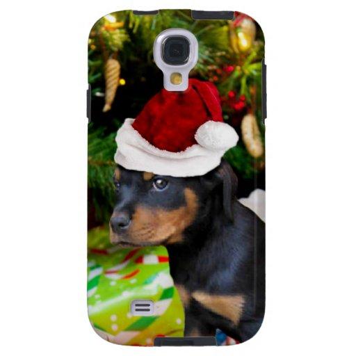 Perrito de Rottweiler del navidad