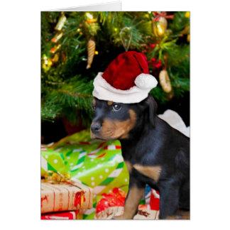 Perrito de Rottweiler del navidad Tarjeta Pequeña