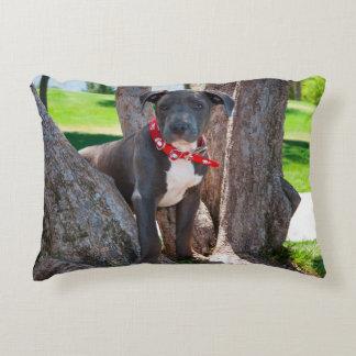 Perrito de Staffordshire bull terrier en un árbol Cojín
