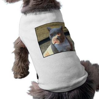 Perrito de Staffordshire Terrier americano Ropa Macota