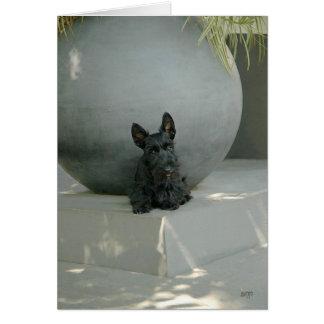 Perrito de Terrier del escocés con el orbe Tarjeta De Felicitación