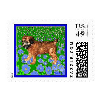 Perrito de trigo de Terrier en jardín Franqueo
