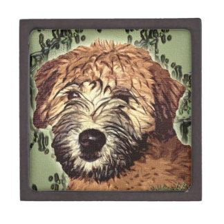 Perrito de trigo Suave-Revestido de Terrier con la Caja De Regalo De Calidad