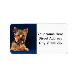 Perrito de Yorkshire Terrier Etiqueta De Dirección