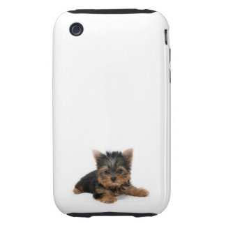 Perrito de Yorkshire Terrier iPhone 3 Tough Coberturas