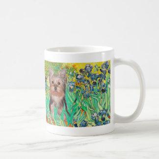 Perrito de Yorkshire Terrier - iris Taza