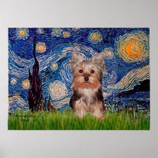 Perrito de Yorkshire Terrier - noche estrellada Póster