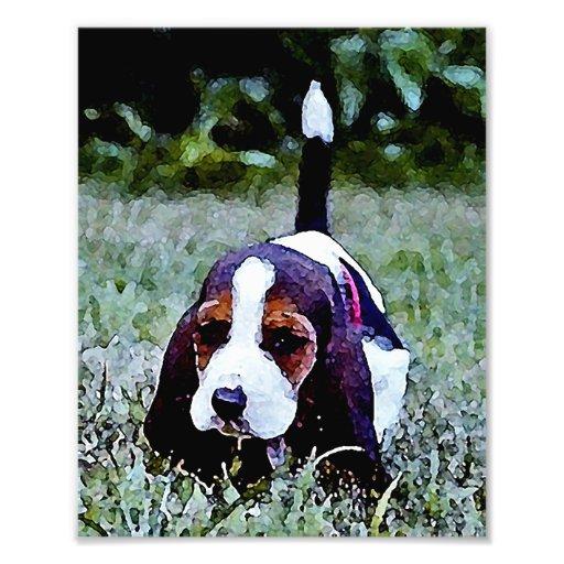 Perrito del afloramiento que camina - blanco negro arte con fotos