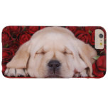 Perrito del amor de Labrador Funda Para iPhone 6 Plus Barely There