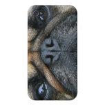 Perrito del barro amasado iPhone 4 carcasa