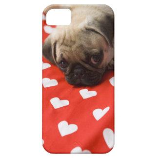 Perrito del barro amasado que miente en la cama, c iPhone 5 cárcasas