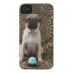 Perrito del barro amasado que se sienta contra el  Case-Mate iPhone 4 carcasas