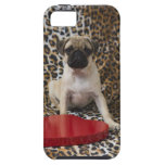 Perrito del barro amasado que se sienta contra est iPhone 5 Case-Mate protectores