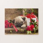 Perrito del barro amasado y caja de regalo rompecabeza con fotos