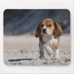 Perrito del beagle alfombrillas de ratón