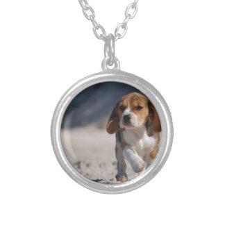 Perrito del beagle collar personalizado