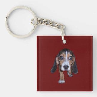 Perrito del beagle que camina - color de fondo llavero cuadrado acrílico a doble cara