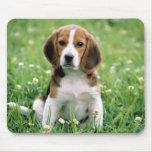 Perrito del beagle tapete de ratón