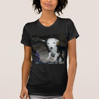Perrito del border collie t shirt