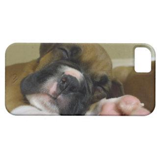 Perrito del boxeador el dormir funda para iPhone SE/5/5s