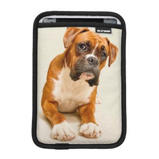 Perrito del boxeador en el contexto poner crema de funda iPad mini