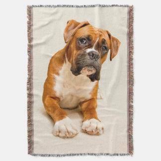 Perrito del boxeador en el contexto poner crema de manta