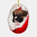 Perrito del boxeador en el navidad que almacena el ornamento para arbol de navidad