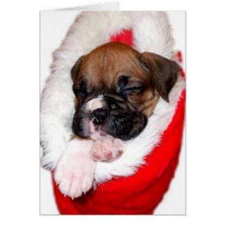 Perrito del boxeador en el navidad que almacena no tarjeta pequeña