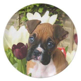 Perrito del boxeador en placa decorativa de los tu plato de cena