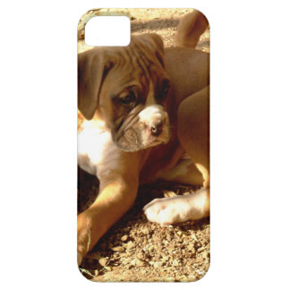 Perrito del boxeador funda para iPhone SE/5/5s