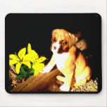 perrito del boxeador y mousepad amarillo de los da tapete de ratones