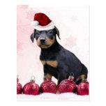 Perrito del Doberman del navidad Postal