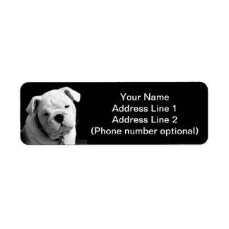 Perrito del dogo etiqueta de remite