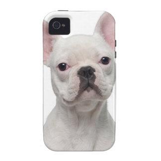 Perrito del dogo francés (5 meses) vibe iPhone 4 funda