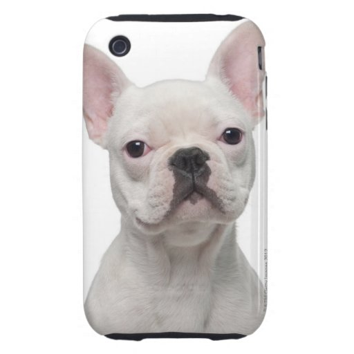 Perrito del dogo francés (5 meses) iPhone 3 tough carcasa