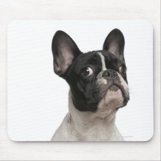 Perrito del dogo francés (5 meses) alfombrilla de ratones