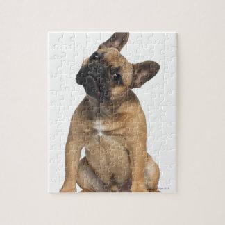Perrito del dogo francés (7 meses) rompecabeza