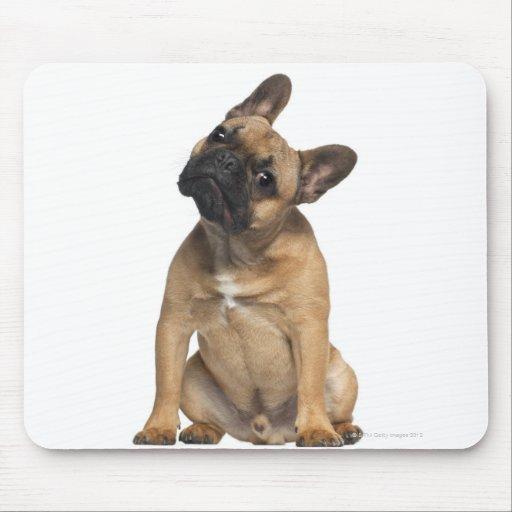 Perrito del dogo francés (7 meses) alfombrilla de ratón