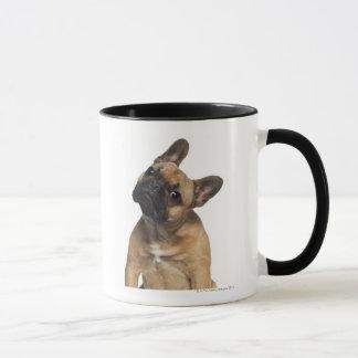 Perrito del dogo francés (7 meses) taza